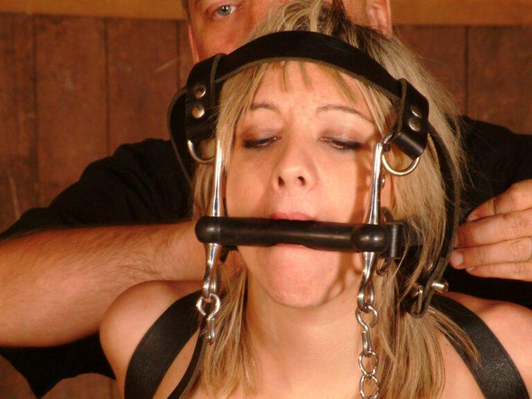 Ponygirl bondage training